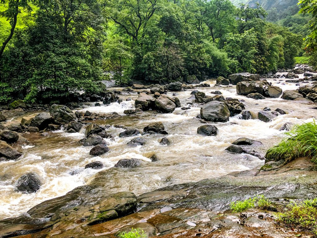 Devkund waterfall: A mysterious jungle trek
